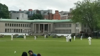 Cricket at Trinity